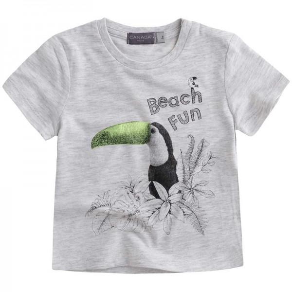 Γκρι μπλουζάκι αγορίστικο με σχέδιο